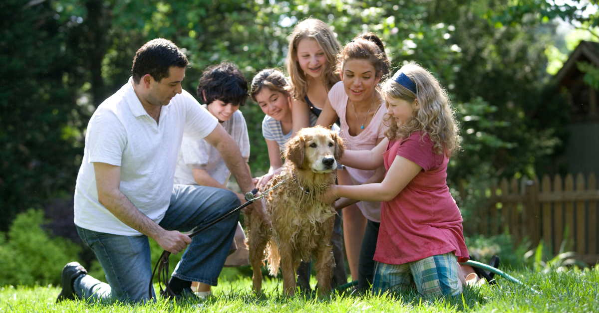 family surrounding pet dog outside on the green grass