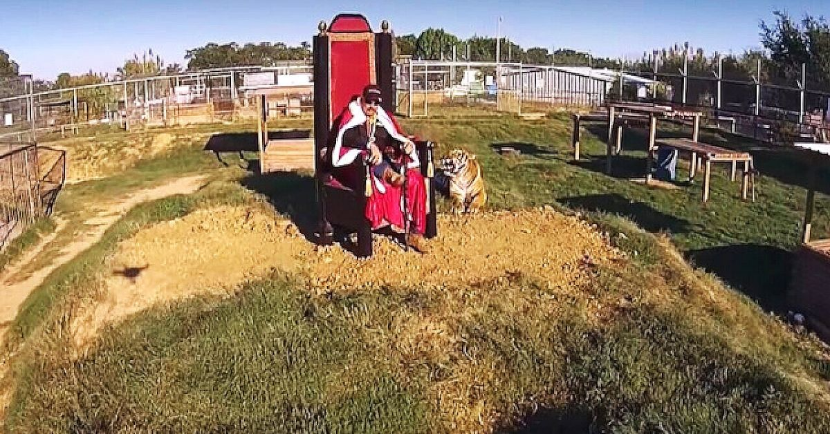 photo of the iconic episode end scene of joe exotic aka tiger king sitting on a throne on a hill