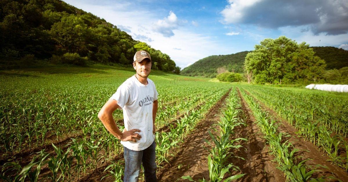 farmer standing in a field of crops